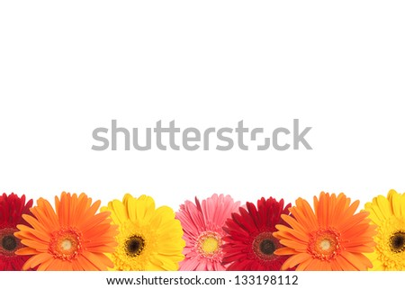 A row of colorful daisies are shown at the bottom of a white page. - stock photo