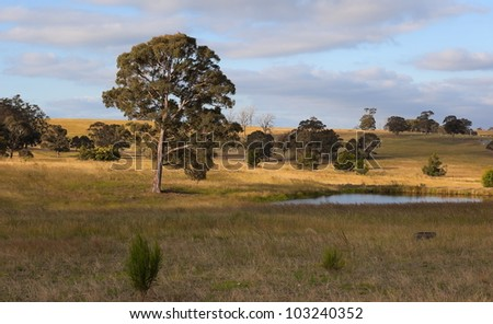 A rural landscape. Country New South Wales. Australia - stock photo