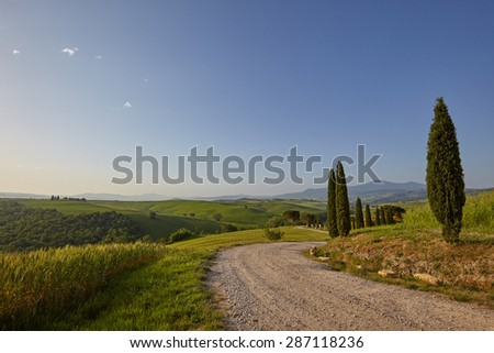 A rural road in Tuscany, Italy - stock photo