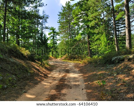 A rural road through a forest - stock photo