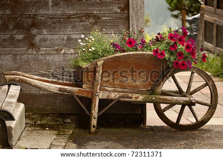 A rustic old wooden wheelbarrow filled with colorful flowers, in a rural mountain setting. - stock photo