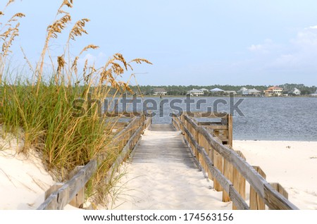 A sand path leads through Sea oats, Uniola paniculata, is an important plant species that stabilizes shifting sand dunes along the Gulf of Mexico near Pensacola - stock photo
