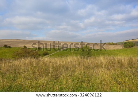 a scenic agricultural landscape in the yorkshire wolds england with hawthorn trees and hedgerows beside newly cultivated hillside fields under a blue cloudy sky in autumn - stock photo
