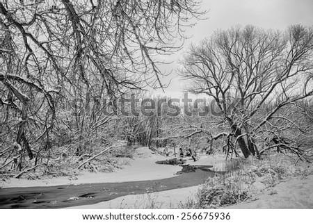 A scenic black and white winter landscape view of the St Vrain Creek in north Boulder County Colorado.   - stock photo