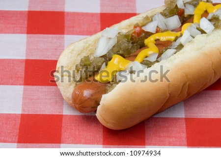 A scrumptious barbecued hotdog with relish, onions, mustard and ketchup rests on a picnic table waiting to be consumed.