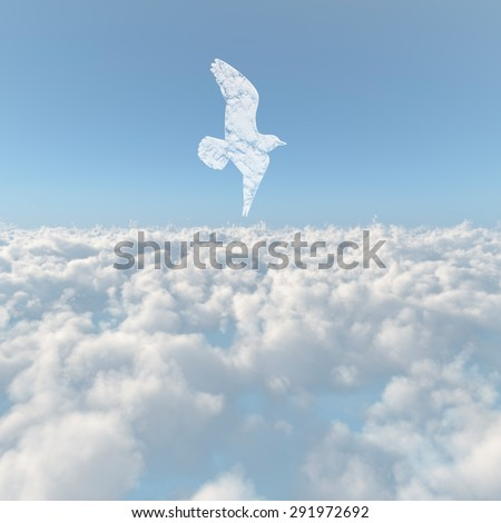 A sea of clouds and bird