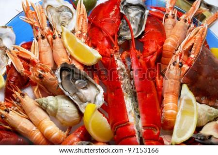 A seafood platter close up - stock photo