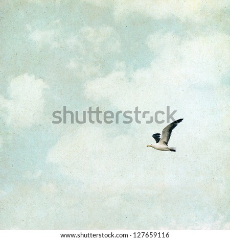 A seagull and clouds on a vintage paper background with grunge textures and grain. - stock photo