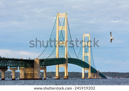 A seagull flies near the Mackinac Bridge, a span connecting the Upper and Lower Peninsulas of the State of Michigan. - stock photo