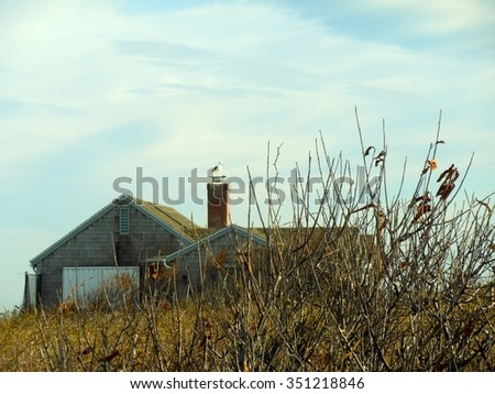 A Seagull Perched on a Seaside House in Rockport, Massachusetts - stock photo