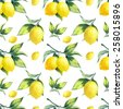 A seamless lemon pattern on white background. - stock vector