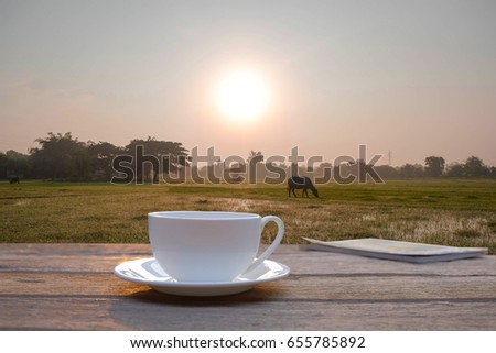 a selective focus picture of a cup of coffee on wooden table with organic green rice field at background.
