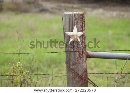 white fence post. A Selective Focus View Of Grungy White Star On Wooden Fence Post In Texas
