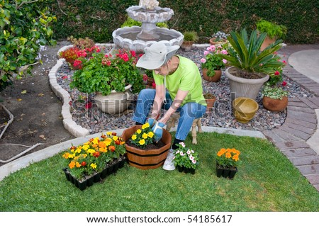 A senior adult plants flowers in a wooden flower pot in her backyard.