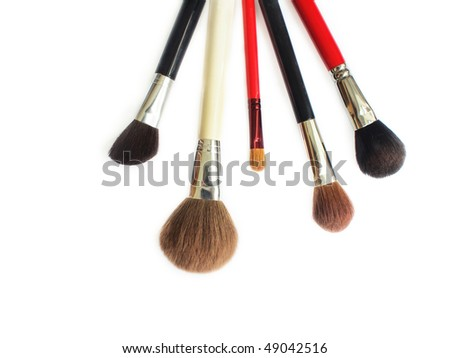 A set of five profession makeup brushes