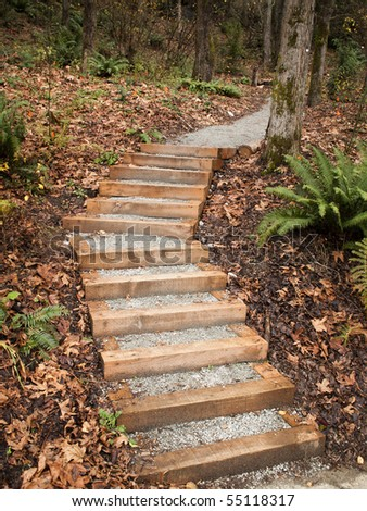 A set of new steps into Interlaken Park in Seattle designed and built as an Eagle Scout project by the Boy Scouts. - stock photo