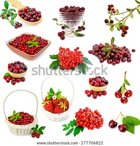 A set of photos of strawberries, cranberries, cranberry, cherry, mountain ash, viburnum isolated on a white background - stock photo