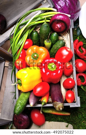 A set of vegetables in a wooden box. Tomatoes, cucumbers, sweet peppers, red onions, red cabbage, hot peppers, lettuce afitsion, eggplant, green onions.