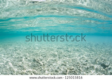A shallow area that once housed a coral reef has been reduced to rubble.  The destruction could have been natural or man-induced but it certainly has reduced biological diversity in the area. - stock photo