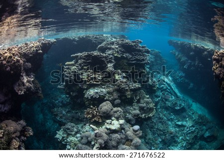 A shallow coral reef grows along a remote isle in the Solomon Islands. This beautiful region is the easternmost part of the Coral Triangle and harbors high marine biodiversity. - stock photo