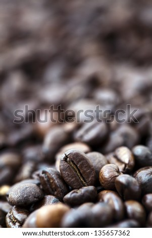 A shallow depth-of-field image of coffee beans, creating bokeh effect in the background. While a single coffee bean receives all the attention due to the selective focus. - stock photo