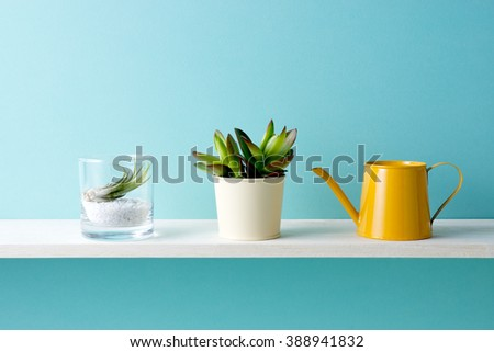 A shelf and a plant - stock photo