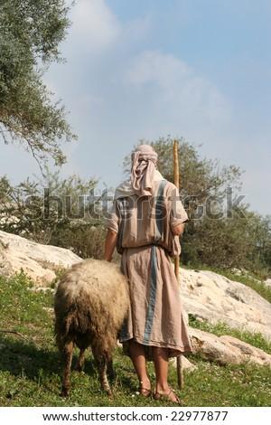 A shepherd in traditional dress leads a ram in Galilee, Israel - stock photo