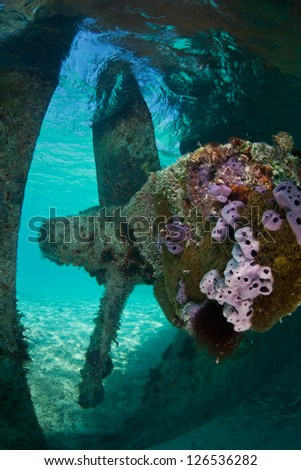 A shipwreck is grounded in extremely shallow water near the Turks & Caicos Islands.  Shipwrecks often act as artificial reefs, attracting invertebrates and fish.  This is the propeller. - stock photo