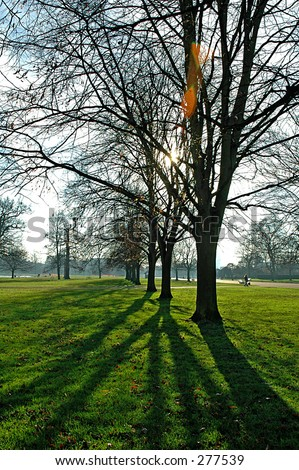 A shot in Hyde Park, London near the Round Pond. - stock photo