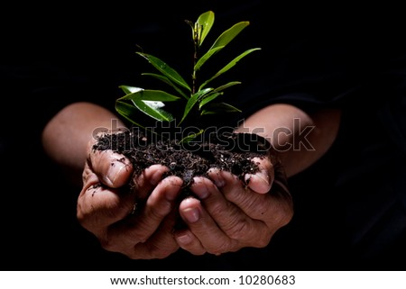 A shot of a senior man holding a new plant - stock photo