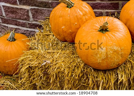 A shot of some pumpkins on a bale of straw