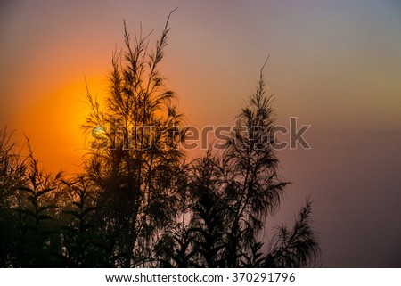 A shot of sun light when the sun is start to rise at Cemoro Lawang, Mt Bromo, East Java, Indonesia. Sunrise and silhouette of Volcanoes in Bromo Tengger Semeru National Park - stock photo