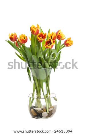 A shot of tulips in a vase