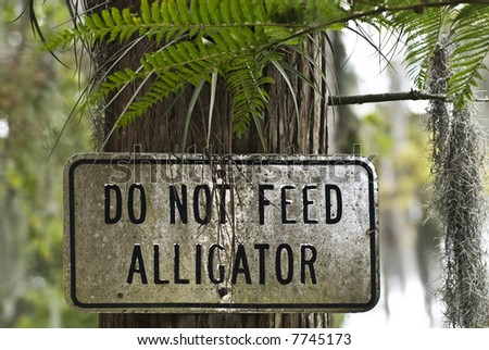 A sign near a lake in Florida warning you not to feed the alligators. - stock photo