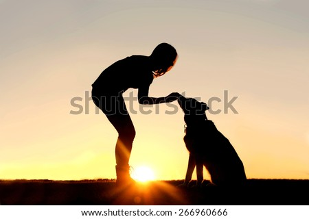 A silhouette of a girl sitting outside in the grass with her pet German Shepherd Mix Dog, feeding him treats during training, in front of a sunsetting sky. - stock photo