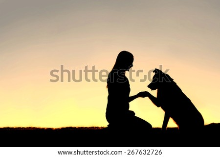 A silhouette of a young woman and her pet German Shepherd Mix Dog shaking hands at sunset.  With copy-space in sky. - stock photo