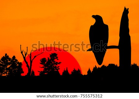 A silhouette of an eagle perched on a leafless tree. The raptor is in front of a burning orange sky and a huge bright red setting sun in the background. The trees of the forest outline the glowing sky