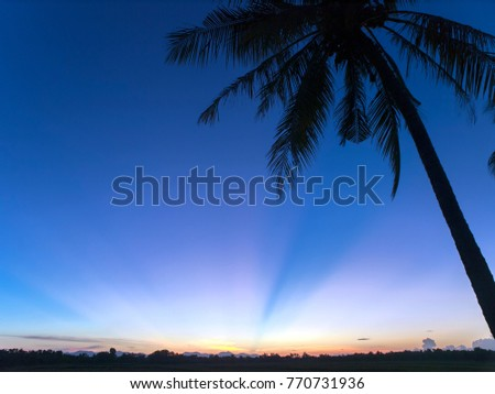 A silhouetted palm tree and rays of light at sunset over Koh Chang island in eastern Thailand.