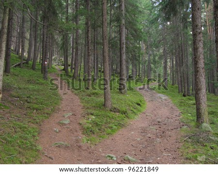 A single alpine path splits in two different directions. It's an autumnal cloudy day. - stock photo