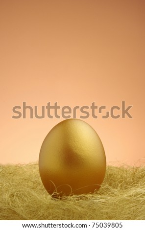 a single golden egg in the nest - stock photo