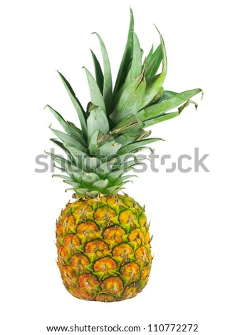 a single pineapple standing against a white background