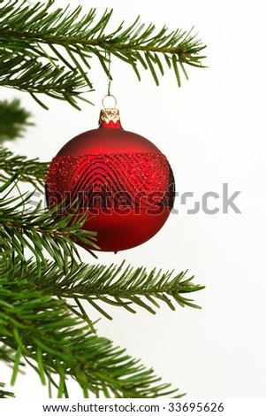 A single red Christmas ball hanging off a tree. - stock photo