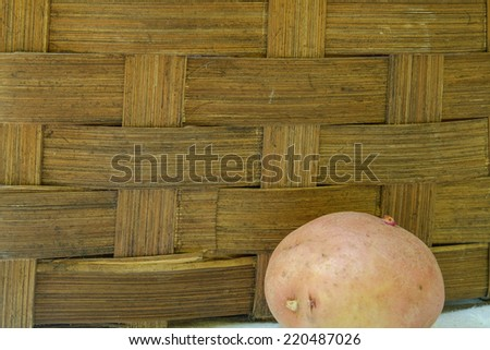 A single red organic potato in front of an old wicker basket - stock photo