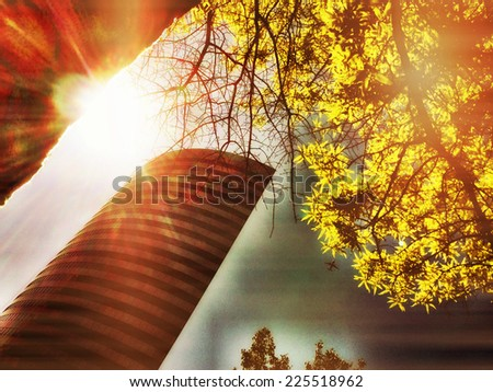 A skyscraper and a tree branch reflected in some light. - stock photo
