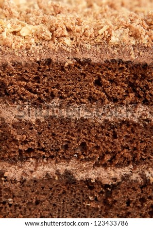 A slice of chocolate cake closeup - stock photo