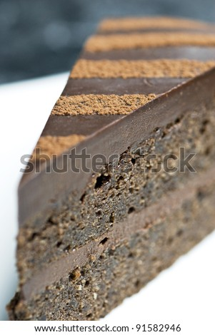 A slice of chocolate cake with chocolate cream.