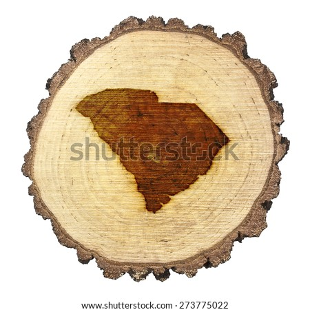 A slice of oak and the shape of South Carolina branded onto .(series) - stock photo