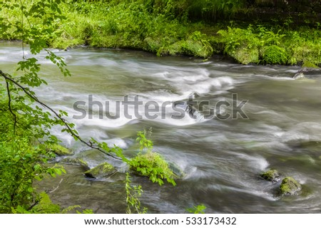A slightly blurry photograph indicating the sppedy flow of shallow water flowing through a forest