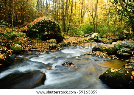A slow moving stream in a forest decked out in fall colors - stock photo