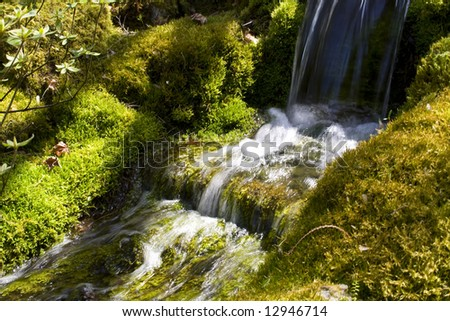 A small garden waterfall with moss in spring
